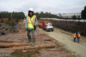 Arianna Sorrentino tiene 35 años de experiencia y 20 años de docencia en el sector forestal.