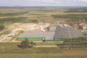 Nueva planta de paneles contrachapados deLumin