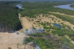 foco incendio forestal uruguay